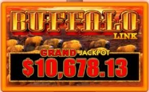 Wild Wild Buffalo™- The all-new Class III game from Aristocrat Gaming™